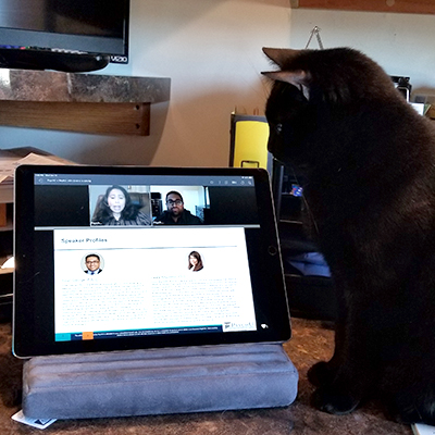 Sammy, being entertained by a webinar